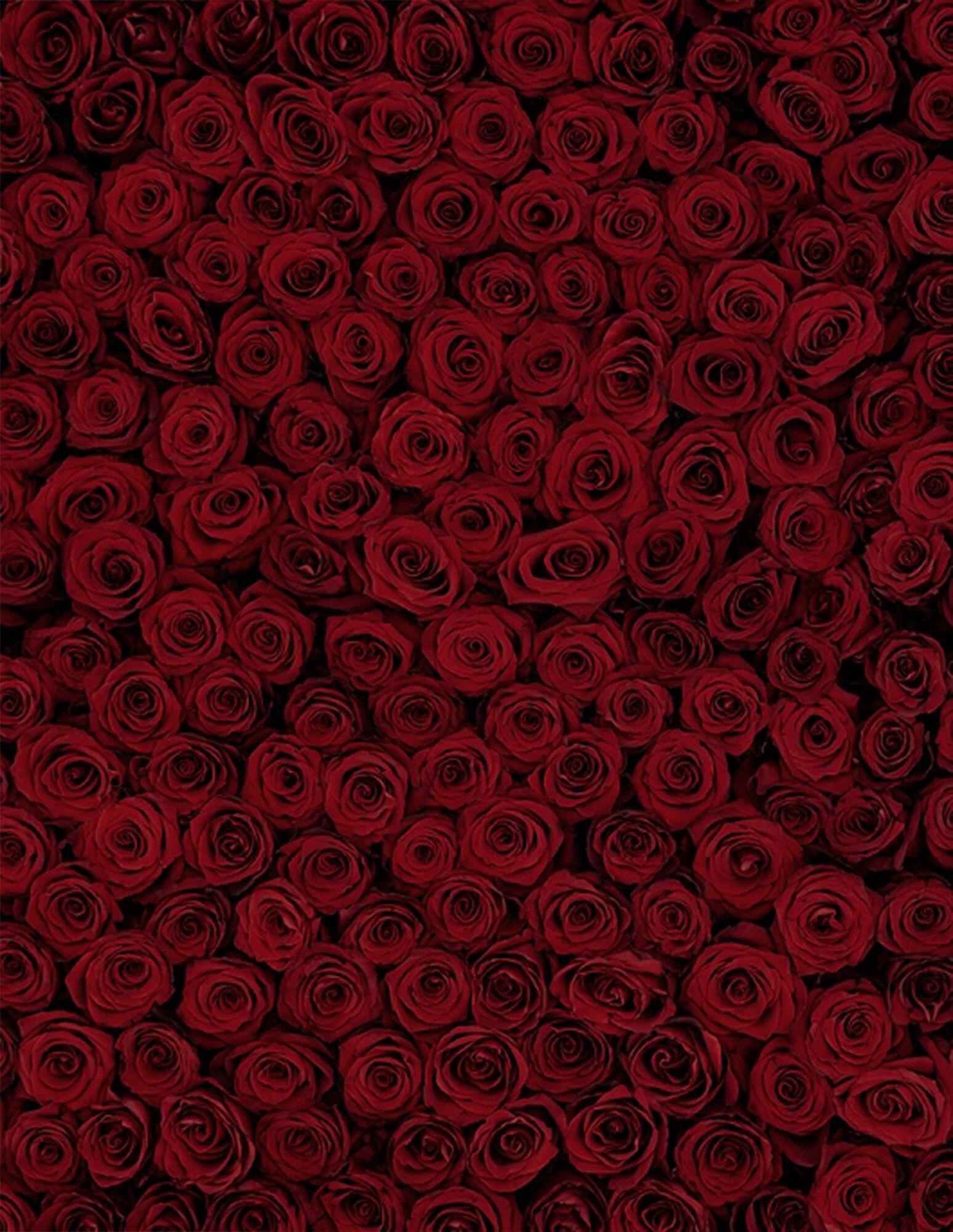 rd-event-valentine-s-day