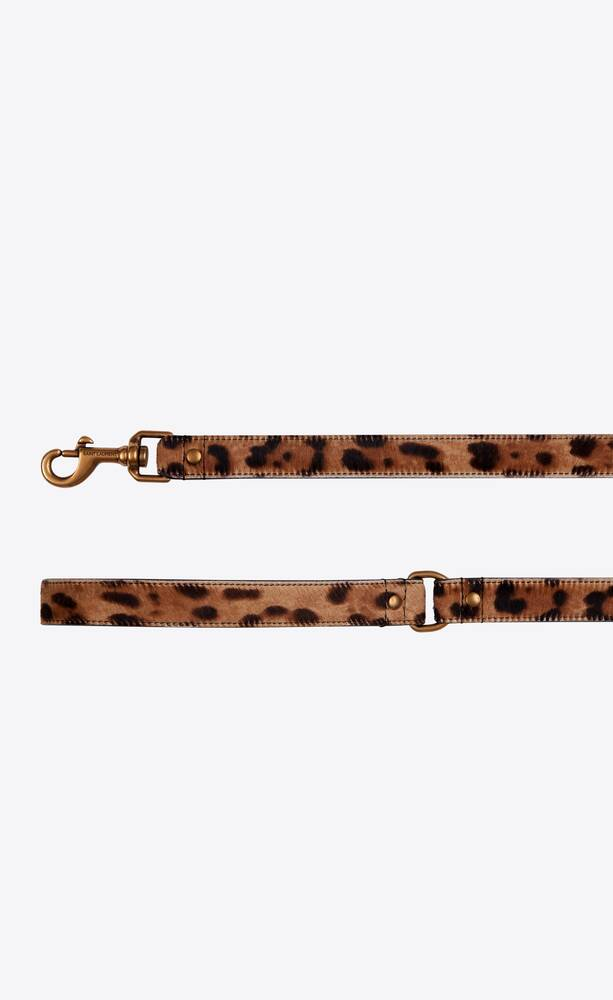 dog leash in ponyskin-look leather with a leopard print