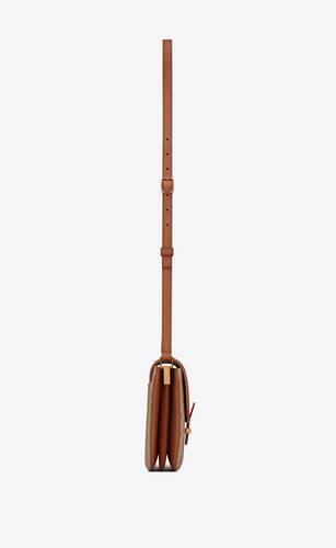 le monogramme camera bag in canvas and leather